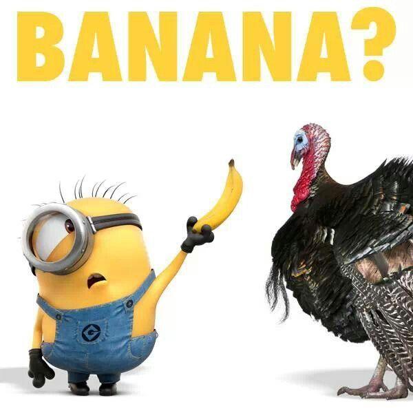 thanksgivingminion
